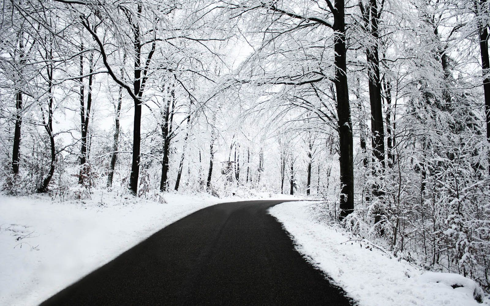 Desktop Wallpapers: Winter Road Desktop Wallpapers