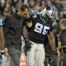 Panthers DE Johnson returns from knee injury The Associated Press