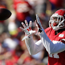 Kansas City Chiefs wide receiver Donnie Avery (17) catches a pass while participating in a drill at NFL football training camp Sunday, July 27, 2014, in St. Joseph, Mo The Associated Press