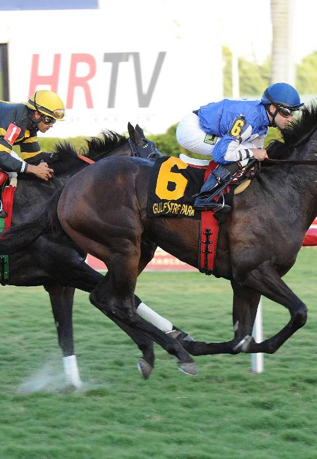 In this photo released by Gulfstream Park, Summer Front captures the Grade II Ft. Lauderdale Stakes on Saturday, Jan. 11, 2014, at Gulfstream Park in Hallandale Beach, Fla