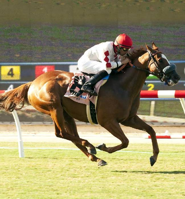 Lil Bit O'Fun and jockey Aaron Gryder win the $90,000 Wickerr Stakes, Wednesday, July 23, 2014 at Del Mar Thoroughbred Club, in Del Mar Calif