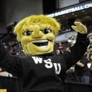 Wichita State's mascot WuShock fires up the crowd before their first-round game against Texas A&M in the women's NCAA college basketball tournament in College Station, Texas, Saturday, March 23, 2013. Fast fact: What's a 'Shocker?' As the lowest seed still playing and one of the lowest ever to reach the final weekend Wichita State's nickname is appropriate. University lore traces the name to 1904, when a football manager called the team as the