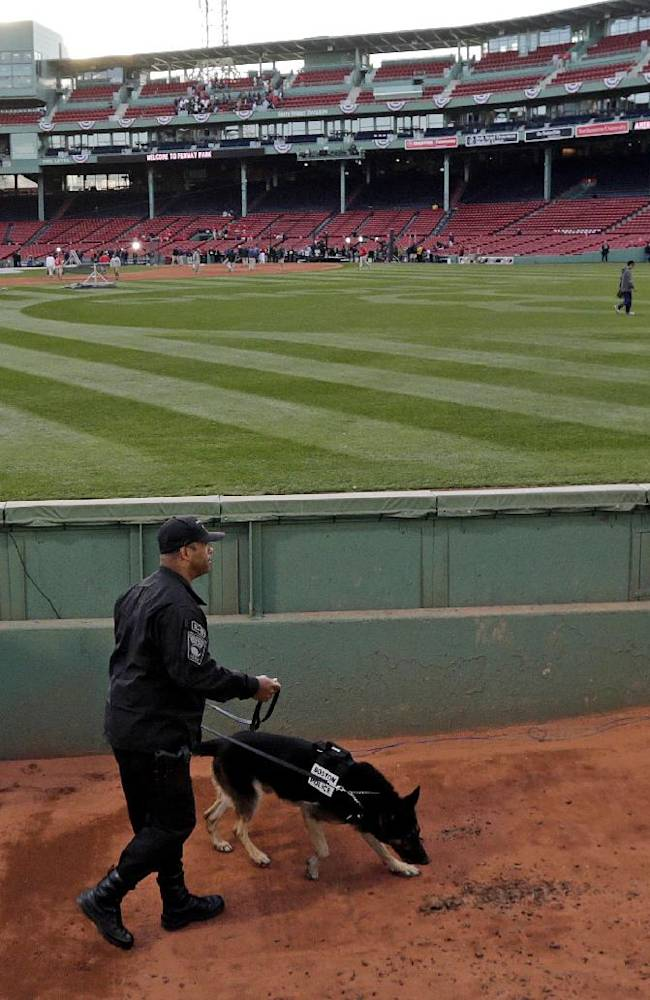 Boston Red Sox starting pitcher Felix Doubront watches as a police dog sniffs around the bullpen before Game 2 of baseball's World Series against the St. Louis Cardinals Thursday, Oct. 24, 2013, in Boston