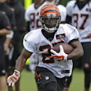 Cincinnati Bengals running back Giovani Bernard runs the ball during the NFL football team's first practice at training camp, Thursday, July 24, 2014, in Cincinnati. (AP Photo) The Associated Press