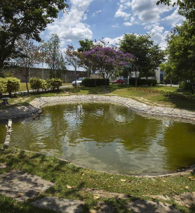 A pond decorates the grounds of the Toca da Raposa 2 training center where Chile's national soccer team will be based during the 2014 FIFA World Cup tournament in Belo Horizonte, Brazil, Thursday, Feb. 13, 2014