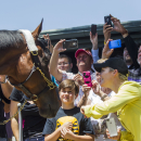 FILE - In this June 18, 2015, file photo, fans take photos and greet Triple Crown winner American Pharoah after the horse arrived at Santa Anita Park in Arcadia, Calif. Since American Pharoah completed his sweep of the Kentucky Derby, Preakness and Belmont Stakes, the past few weeks have turned into a whirlwind of appearances, events and parties around the country for owner Ahmed Zayat, trainer Bob Baffert and jockey Victor Espinoza. American Pharoah, too. (AP Photo/Ringo H.W. Chiu, File)