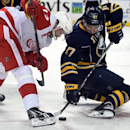 Detroit Red Wings center Pavel Datsyuk (13), of Russia, battles for the puck with Buffalo Sabres center Torrey Mitchell (17) during the second period of an NHL hockey game Tuesday, Jan. 13, 2015, in Buffalo, N.Y. Detroit won 3-1 The Associated Press