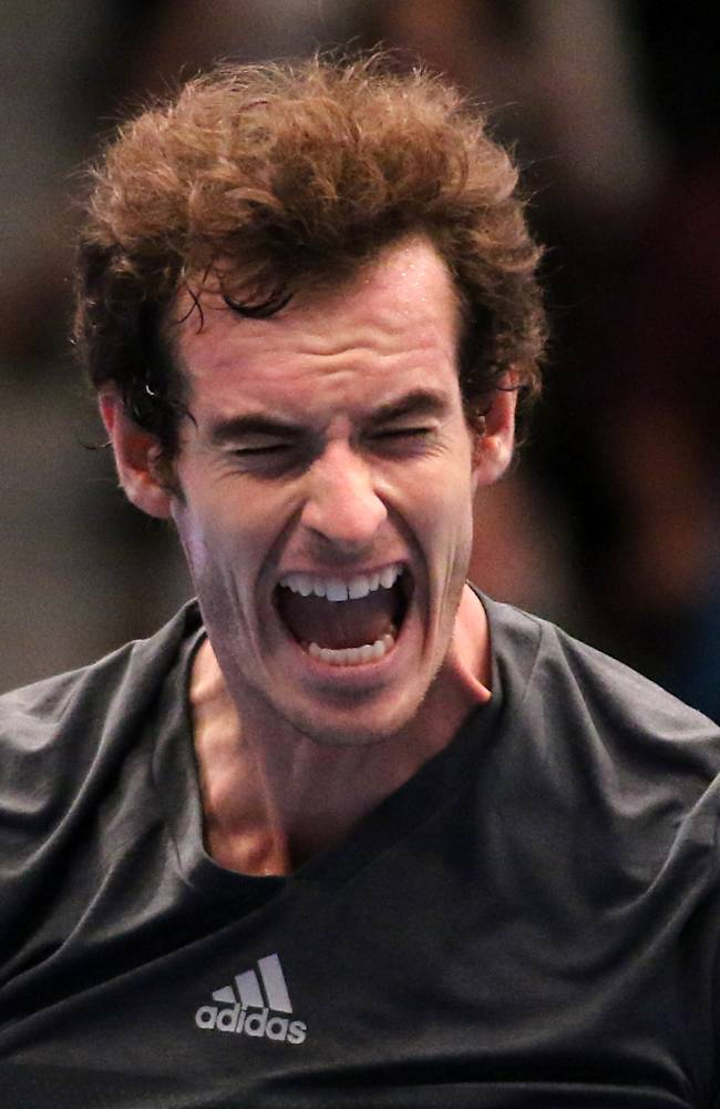 Murray beats Ferrer to reach Valencia final