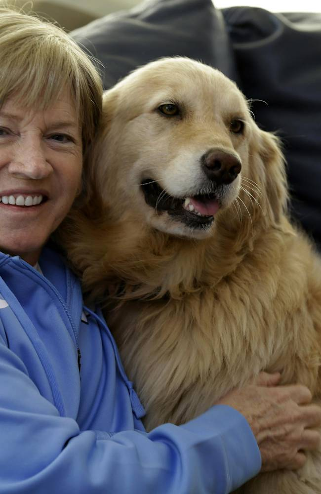 In this photo taken Wednesday, Dec. 18, 2013, North Carolina women's basketball coach Sylvia Hatchell sits with her dog Maddie in Chapel Hill, N.C. After being diagnosed with leukemia, Hatchell has temporarily stepped away from her coaching duties to focus on treatment