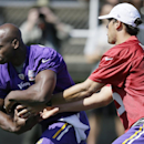 Minnesota Vikings quarterback Matt Cassel, right, hands the ball off to running back Adrian Peterson during NFL football training camp, Friday, July 25, 2014, in Mankato, Minn The Associated Press