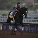 An exercise rider takes Prayer for Relief for a morning workout ahead of the Breeders' Cup Classic horse race at Santa Anita Park Wednesday, Oct. 29, 2014, in Arcadia, Calif. (AP Photo/Jae C. Hong)