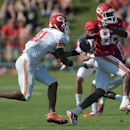 Kansas City Chiefs corner Sean Smith (21) strips receiver Dwayne Bowe (82) of the ball during NFL football training camp Sunday morning, July 27, 2014, in St. Joseph. Mo The Associated Press