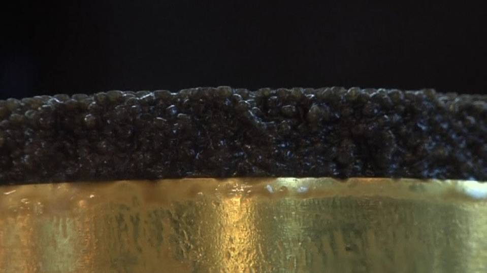 Caviar that costs 100,000 euros