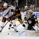 Arizona Coyotes right wing David Moss, left, scores past Anaheim Ducks goalie John Gibson during the first period of an NHL hockey preseason game in Anaheim, Calif., Tuesday, Sept. 23, 2014. The Associated Press