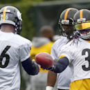 Veteran back Williams ready for next act with Steelers The Associated Press