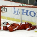 Carlo Colaiacovo relishing Red Wings' playoff run photo