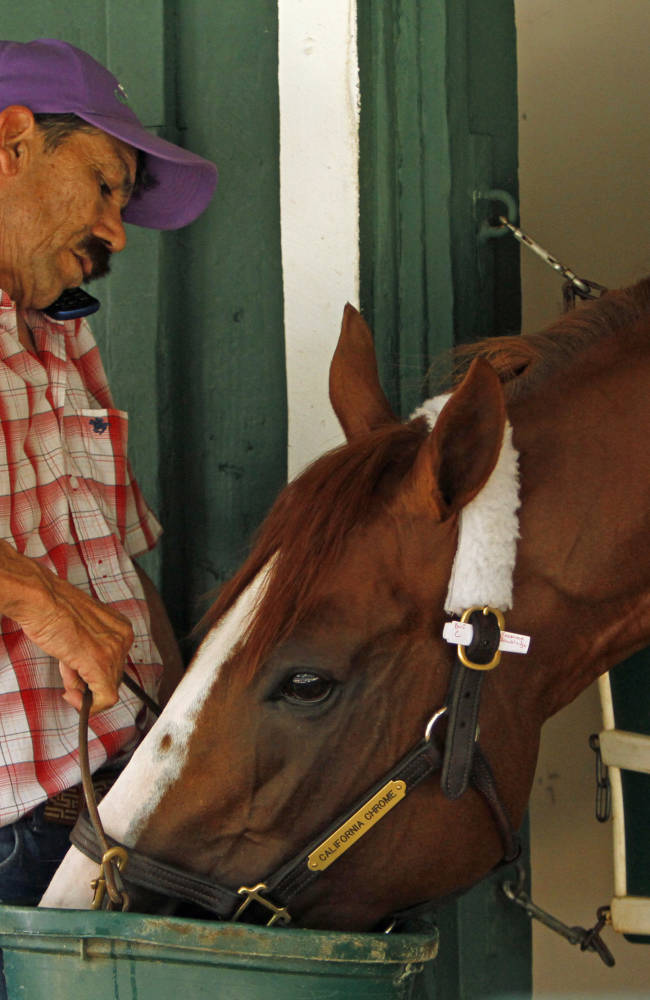 California Chrome ready for anything in Preakness