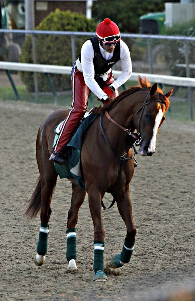 Kentucky Derby winner California Chrome jogged the wrong way around the track with exercise rider Willy Delgado aboard for the first time since his big win at Churchill Downs in Louisville, Ky., Wednesday morning, May 7, 2014