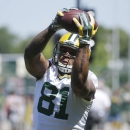 GB Packers tight end Quarless charged with firing a gun The Associated Press