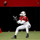 Cardinals' Dockett carted off with knee injury The Associated Press