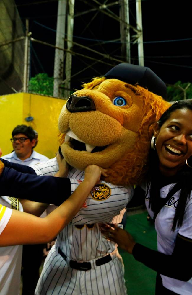 In this Dec. 4, 2013 photo, Leones of Caracas mascot, center, jokes with fans of the rivals Magallanes of Valencia prior to their baseball game at Estadio Universitario in Caracas, Venezuela. For players accustomed to the small crowds of minor league stadiums back home, the frequently sold out Estadio Universitario in Caracas can be daunting. Abundant servings of rum and whiskey and a nerve-rattling cacophony of samba drums pump up the 25,000 screaming fans who hang on every pitch.