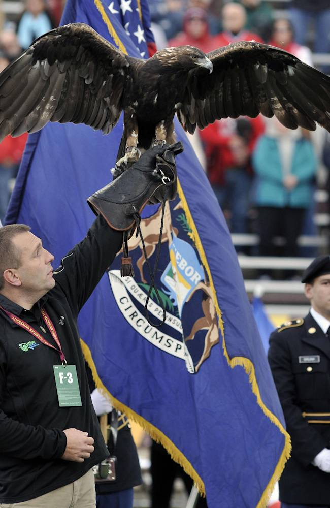 Travis Williams, director of  the Outdoor Discovery Center in Holland, Mich, holds an American Bald Eagle during opening ceremonies at the Northern Illinois Central Michigan NCAA college football game in Mount Pleasant, Mich., Saturday, Oct. 19,2013