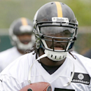 In this May 29, 2014, file photo, Pittsburgh Steelers running back LeGarrette Blount (27) carries a ball during an NFL football organized team activity in Pittsburgh. Steelers running backs Le'Veon Bell and Blount will be charged with marijuana possession