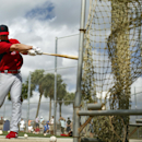 St. Louis Cardinals' Mark Ellis hits a baseball into a net before taking live batting practice at spring training Thursday, Feb. 20, 2014, in Jupiter, Fla The Associated Press