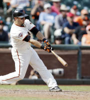 San Francisco Giants' Marco Scutaro drives in a run with a single against the Colorado Rockies during the eighth inning of a baseball game on Wednesday, Sept. 11, 2013, in San Francisco. (AP Photo/Marcio Jose Sanchez)