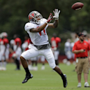 Tampa Bay Buccaneers wide receiver Louis Murphy Jr., leaps to pull in a pass during an NFL football training camp Monday, July 28, 2014, in Tampa, Fla The Associated Press