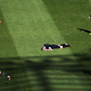 Referee Chris Foy, center, is laid on the pitch after being struck by a ball to the face during the English Premier League soccer match between Newcastle United and Swansea City at St James' Park, Newcastle, England, Saturday, April 19, 2014