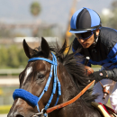 In this photo provided by Benoit Photo, Al and Sandee Kirkwood's Boozer and jockey Rafael Bejarano win the $100,000 California Flag Handicap, Saturday, Oct. 18, 2014 at Santa Anita Park, in Arcadia, Calif. (AP Photo/Benoit Photo)