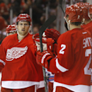 Detroit Red Wings center Darren Helm (43) celebrates his goal against the New York Rangers in the third period during an NHL hockey game in Detroit, Saturday, Dec. 6, 2014 The Associated Press