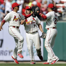 St. Louis Cardinals' Jon Jay, left, Matt Holliday, center, and Allen Craig celebrate following the Cardinals' 10-4 victory over the Chicago Cubs in a baseball game Saturday, April 12, 2014, in St. Louis. T The Associated Press
