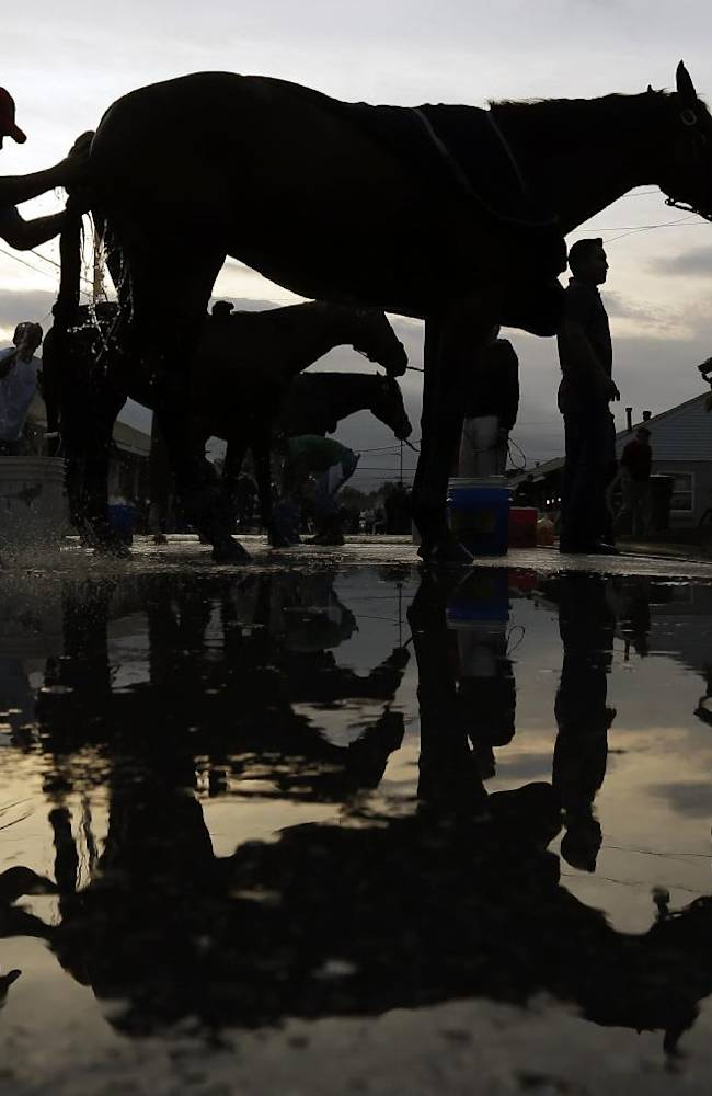 Horses get bathes after their morning workouts at Churchill Downs Wednesday, April 30, 2014, in Louisville, Ky