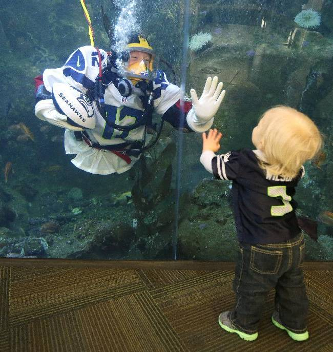 Nicole Killebrew, a diver at the Seattle Aquarium, wears a Seattle Seahawks NFL football No. 12 jersey as she greets Colson Bouma, 1, while diving in a large interactive marine life display Friday, Jan. 17, 2014, in Seattle. The Seahawks will play the San Francisco 49ers on Sunday for the NFC championship in Seattle, and the aquarium was one of many locations around the city promoting the gam