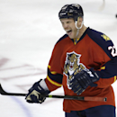 Florida Panthers right wing Shawn Thornton (22) makes a face during a video review by officials after he scored a goal during the second period of an NHL hockey game against the Minnesota Wild, Monday, Nov. 24, 2014, in Sunrise, Fla. The ruling confirmed