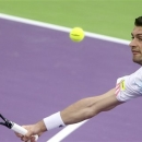 Daniel Brands of Germany returns the ball to France's Gael Monfils during the Qatar ATP Open Tennis tournament in Doha, Qatar, Thursday, Jan. 3, 2013. (AP Photo/Osama Faisal)