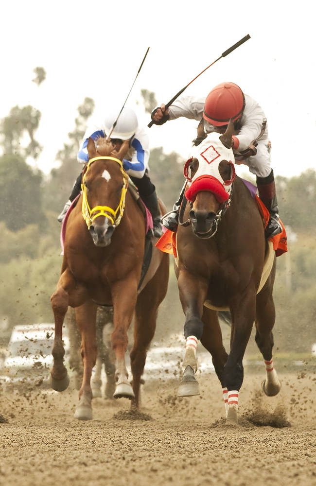 Big Macher and jockey Tyler Baze, second from right,  go down the stretch to win the Grade II $200,000 Potrero Grande Stakes Saturday, April 12, 2014 at Santa Anita Park, Arcadia, CA
