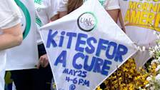 Group to Fly Kites to Honor Lung Cancer Victims