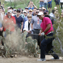 Tiger Woods hits out of the rough on the 11th hole during the first round of the Phoenix Open golf tournament, Thursday, Jan. 29, 2015, in Scottsdale, Ariz. (AP Photo/Rick Scuteri)