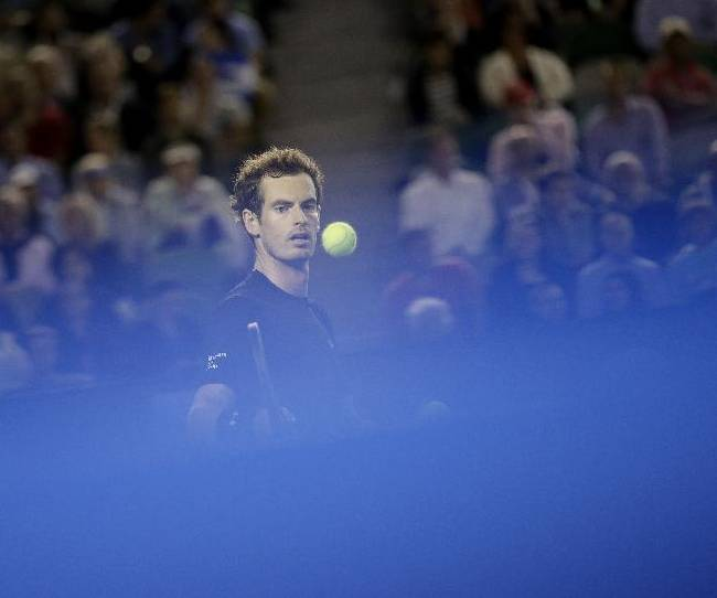 Andy Murray of Britain looks at ball between play in his semifinal match against Tomas Berdych of the Czech Republic at the Australian Open tennis championship in Melbourne, Australia, Thursday, Jan. 29, 2015