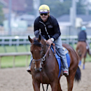 In this photo taken Thursday, May 21, 2015, American Pharoah, ridden by Jorge Alvarez, jogs on the track at Churchill Downs in Louisville, Ky. The Kentucky Derby and Preakness Stakes winner is expected to be the heavy favorite to win the Belmont on June 6, attempting to become the first Triple Crown winner since Affirmed in 1978. The colt has won six straight races after a career-opening loss, was voted 2-year-old champion and has earned $3,730,300 on the track. (Reed Palmer Photography/Churchill Downs via AP) NO SALES