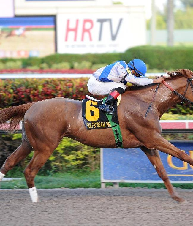 In this photo provided by Gulfstream Park, Lea, with Luis Saez aboard, captures the Grade III Hal's Hope horse race at Gulfstream Park in Hallandale Beach, Fla., Saturday, Jan. 11, 2014