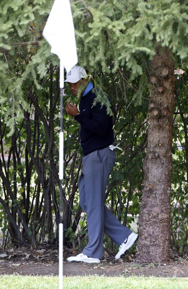 In this photo taken Friday, Sept. 13, 2013, Tiger Woods walks out from under a tree behind the first green to check the line of his shot during the second round of the BMW Championship golf tournament at Conway Farms Golf Club in Lake Forest, Ill. Woods was docked two shots at the end of his second round when his ball moved ever so slightly behind the first green. Video from a camera man hired by PGA Tour Entertainment showed the golf ball dip down as Woods was removing a twig before playing a shot from the trees