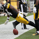 Pittsburgh Steelers wide receiver Antonio Brown (84) falls over the ball after setting it spinning in celebration of making a touchdown catch against the Tampa Bay Buccaneers in the second quarter of the NFL football game on Sunday, Sept. 28, 2014 in Pitt