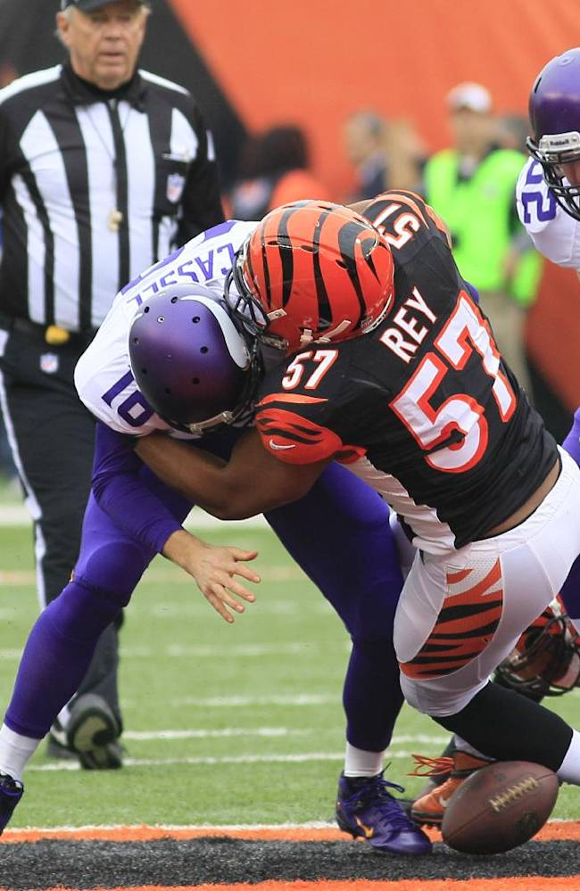 Minnesota Vikings quarterback Matt Cassel (16) fumbles the ball as he is hit by Cincinnati Bengals middle linebacker Vincent Rey (57) in the first half of an NFL football game on Sunday, Dec. 22, 2013, in Cincinnati. Cincinnati recovered the fumble