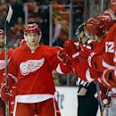 Detroit Red Wings center Darren Helm (43) celebrates his goal against the Dallas Stars in the first period during an NHL hockey game in Detroit Thursday, Dec. 4, 2014 The Associated Press