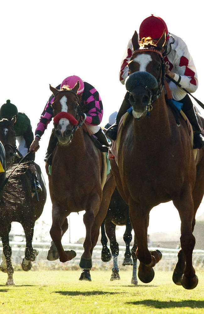 Lil Bit O'Fun and jockey Aaron Gryder, third from left, outlegs Bright Thought, left, and Rangi, second from left, to win the $90,000 Wickerr Stakes, Wednesday, July 23, 2014 at Del Mar Thoroughbred Club, in Del Mar Calif