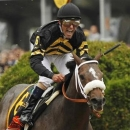 Oxbow with jockey Gary Stevens in the irons takes first place at the 138th running of the Preakness Stakes at Pimlico Race Course in Baltimore, Maryland May 18, 2013. REUTERS/Kevin Lamarque
